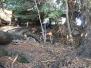 Purau Bay 2012